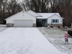 Photo of 2220 141st Avenue, Dorr, MI 49323 (MLS # 19000303)
