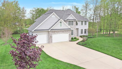 Photo of 7251 Beverly Drive, South Haven, MI 49090 (MLS # 19000727)