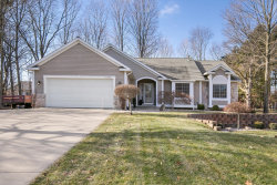 Photo of 11049 Timberline Drive, Allendale, MI 49401 (MLS # 19002239)
