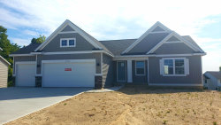 Photo of 6930 City View, Hudsonville, MI 49426 (MLS # 19002321)