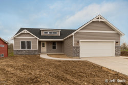 Photo of 205 E Thornhill Court, Hastings, MI 49058 (MLS # 19002354)