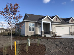 Photo of 10129 Prairie Grass Court, Unit #41, Zeeland, MI 49464 (MLS # 19003908)