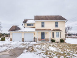 Photo of 22379 Bluebird Avenue, Mattawan, MI 49071 (MLS # 19005632)