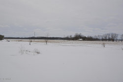 Tiny photo for 75728 M-51 Highway, Decatur, MI 49045 (MLS # 19008992)