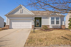 Photo of 7023 Dale Hollow Drive, Caledonia, MI 49316 (MLS # 19010258)