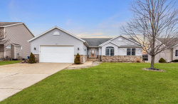 Photo of 894 Red Tail Drive, Coopersville, MI 49404 (MLS # 19010481)