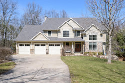 Photo of 6579 Hidden Lake Circle, Richland, MI 49083 (MLS # 19012225)