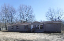 Tiny photo for 42209 85th Avenue, Decatur, MI 49045 (MLS # 19012289)
