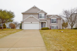 Photo of 13234 Willowvale Drive, Grand Haven, MI 49417 (MLS # 19020592)