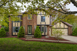Photo of 7175 Youngstown Avenue, Hudsonville, MI 49426 (MLS # 19020648)