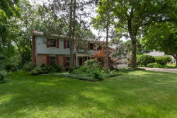 Photo of 7534 Farmington Avenue, Kalamazoo, MI 49009 (MLS # 19028769)