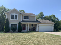 Photo of 10341 Mulberry Drive, Middleville, MI 49333 (MLS # 19031330)