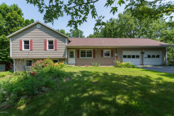 Photo of 2813 S 33rd Street Street, Galesburg, MI 49053 (MLS # 19031918)