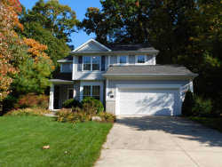 Photo of 18614 Woodduck Drive, Spring Lake, MI 49456 (MLS # 19032856)
