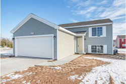 Photo of 58227 Blue Stem Circle, Mattawan, MI 49071 (MLS # 19034461)