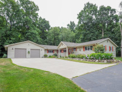 Photo of 10142 E C Avenue, Richland, MI 49083 (MLS # 19036995)