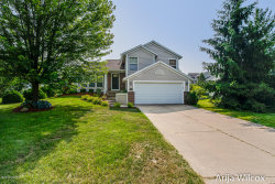 Photo of 5666 W Grove Drive, Kentwood, MI 49512 (MLS # 19039086)