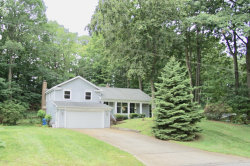 Photo of 17851 Hiawatha Drive, Spring Lake, MI 49456 (MLS # 19039530)