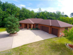 Photo of 3430 Buttrick Avenue, Ada, MI 49301 (MLS # 19041991)