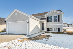 Photo of 59149 Silvergrass Drive, Mattawan, MI 49071 (MLS # 19042361)