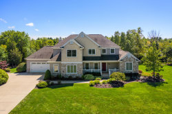 Photo of 7262 Beverly Drive, South Haven, MI 49090 (MLS # 19043085)