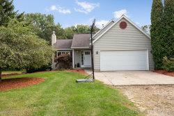 Photo of 8975 Parmalee Road, Middleville, MI 49333 (MLS # 19044338)
