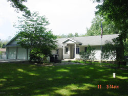 Photo of 2053 108th Avenue, Otsego, MI 49078 (MLS # 19044541)