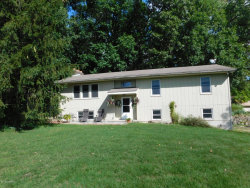 Photo of 9330 S 34th Street, Scotts, MI 49088 (MLS # 19045113)