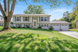 Photo of 6652 Rix Street, Ada, MI 49301 (MLS # 19046198)