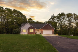 Photo of 11770 Edgewood Drive, Bellevue, MI 49021 (MLS # 19048815)