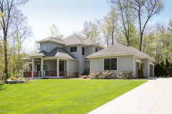 Photo of 15400 Tillinghast Circle, Augusta, MI 49012 (MLS # 19048992)