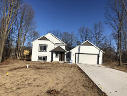 Photo of 3645 Urban Depot Court, Wayland, MI 49348 (MLS # 19049825)