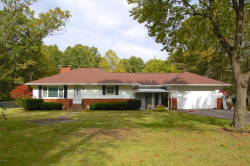 Photo of 1611 Stateline Road, Niles, MI 49120 (MLS # 19051279)