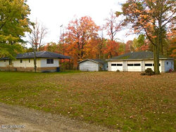 Photo of 807 S Goode Drive, White Cloud, MI 49349 (MLS # 19051297)