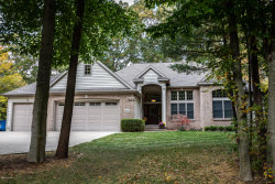 Photo of 15213 S Scenic Court, Spring Lake, MI 49456 (MLS # 19052319)