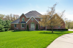 Photo of 3813 Briarpatch Circle, Galesburg, MI 49053 (MLS # 19053620)