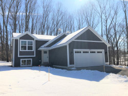 Photo of 3142 Valley Vista Drive, Allegan, MI 49010 (MLS # 19053798)