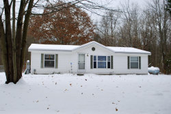 Photo of 18722 76th Street, South Haven, MI 49090 (MLS # 19054979)
