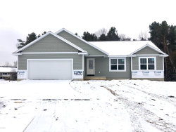 Photo of 6230 Parker Street, Allendale, MI 49401 (MLS # 19056155)