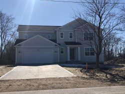 Photo of 10744 Paw Paw Drive, Zeeland, MI 49464 (MLS # 19057103)