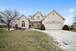 Photo of 11106 Riley Street, Zeeland, MI 49464 (MLS # 19058421)