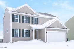 Photo of 2560 Green Rush Lane, Zeeland, MI 49464 (MLS # 19058528)