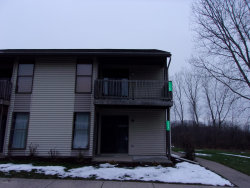 Photo of 11369 40th Avenue, Unit 16, Allendale, MI 49401 (MLS # 20000253)