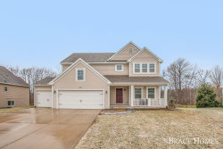 Photo of 8645 Shore Way Drive, Byron Center, MI 49315 (MLS # 20001009)