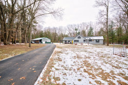 Photo of 3445 34th Street, Hamilton, MI 49419 (MLS # 20002220)
