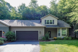 Photo of 9279 The Woodlands Trail, Portage, MI 49002 (MLS # 20002279)