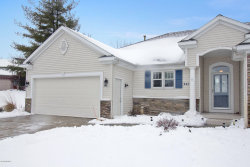 Photo of 3417 English Hills Drive, Unit 26, Walker, MI 49544 (MLS # 20002370)