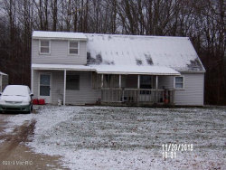 Photo of 1564 68th Street, Fennville, MI 49408 (MLS # 20004334)
