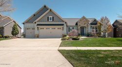 Photo of 11000 Waterpoint Drive, Allendale, MI 49401 (MLS # 20008545)