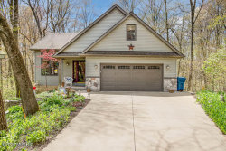 Photo of 7415 Stoney Creek Drive, Augusta, MI 49012 (MLS # 20015811)